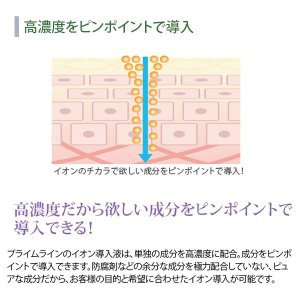 < プロズビ > プライム イオンエッセンス 高濃度 コラーゲン 60ml 「 美容液 エッセンス モイスチャーエッセンス モイスチャー美容液 」|nshop-y|05