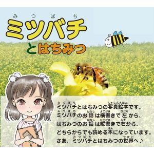 ミツバチとはちみつ nssc