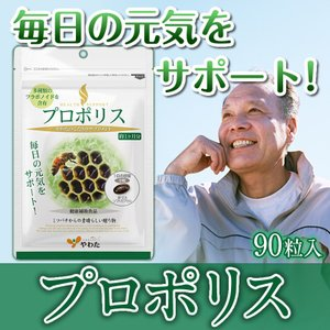 やわたのプロポリス 1袋(90粒入) フラボノイドたっぷり 毎日の健康をサポート|ntc-yh