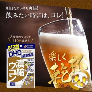 DHC 濃縮ウコン 1袋120粒入 サプリメント 健康 乾杯 飲み会 ビアガーデン 翌日もスッキリ!集中したい人に!|ntc-yh