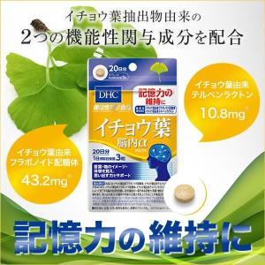 DHC  イチョウ葉 脳内アルファ 60粒入×3袋 サプリ テルペンラクトン 健康 イチョウ葉由来の機能性関与成分!|ntc-yh