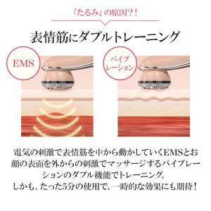 美顔器 モテリフト EMS バイブレーション RF LED リフトケア 【日テレ7公式】|ntv7|04