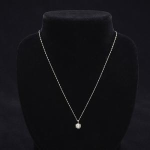 純プラチナ大粒ダイヤ 0.95ct ネックレス|ntv7