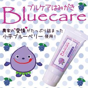 ブルケアはみがき 歯磨き粉 歯周病 ホワイトニング ジェル ブルーベリー ご当地|nubshop
