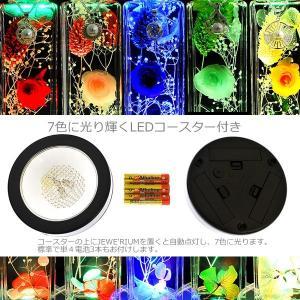 ハーバリウム 母の日 ギフト セット ジュエリー ハーバリウム 光る プリザーブドフラワー プレゼント 女性 花 LEDコースター付き|nuchigusui|13