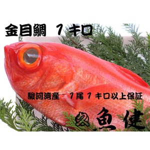 【1キロ保証】丸ごと一尾金目鯛(静岡県産)お刺身・煮付・業務用