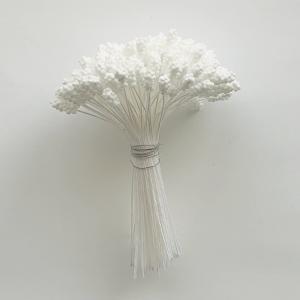 カスピアペップ/花芯(白)144本入|nunogatari