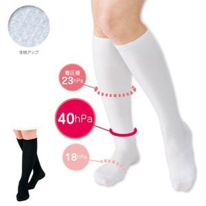 看護師 白衣 女性 靴下 抗菌着圧ハイソックス(3足組)|nursery-y
