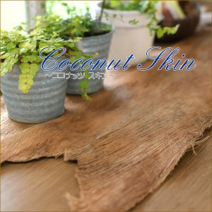 ココナッツスキン 椰子の木 樹皮 ディスプレイ マリン リゾート 海 エスニック おしゃれ インテリア アジアン雑貨|nusa