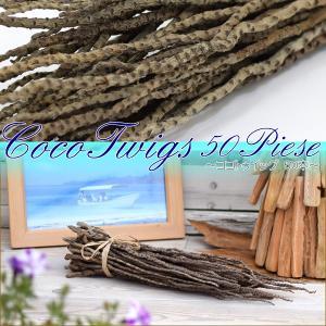 ココトゥイッグ50本 椰子の木 小枝 ディスプレイ マリン リゾート 海 エスニック おしゃれ インテリア アジアン雑貨|nusa
