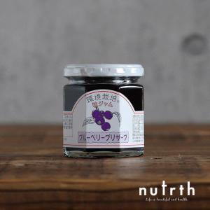 信州自然王国 ブルーベリープリザーブ 無添加 200g|nutrth