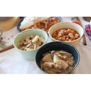 スープご飯 お粥×リゾット レトルトスープ 無添加 nutrth 和ゾット 豚肉と大根の柚子胡椒 210g|nutrth|05