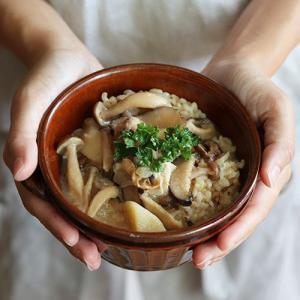 スープご飯 お粥×リゾット 無添加 nutrth 和ゾット 全6種類セット nutrth 03