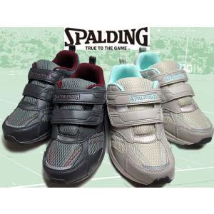 スポルディング SPALDING ジョギングシューズ マジックベルト ベルクロタイプ スニーカー レディース 靴 nws