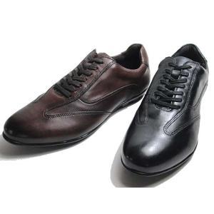 センス SENS SC-9203 レザースニーカー メンズ 靴|nws