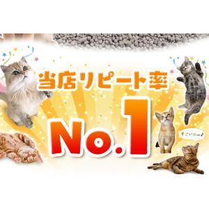 (タイムセール) 炭の猫砂 7L×4袋 アイリ...の詳細画像3