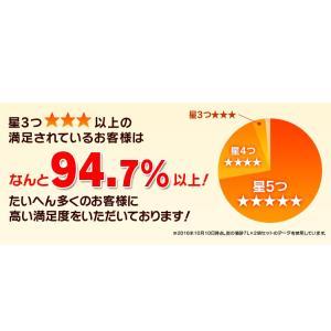 (タイムセール) 炭の猫砂 7L×4袋 アイリスオーヤマ 猫砂 炭 固まる 燃える おすすめ ペットトイレ あすつく|nyanko|10