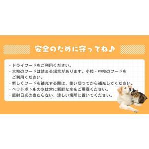 ペット用自動給餌器 ホワイト 猫用 飲み水 ペット用品 自動 給水器|nyanko|10