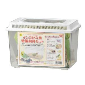 インコひな用 特製飼育セット 三晃商会|nyanko