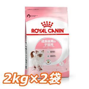 ロイヤルカナン 猫 キトン 2kg×2個セット (生後12ヵ月齢まで 成長後期の子猫用 FHN キャットフード) 正規品|nyanko