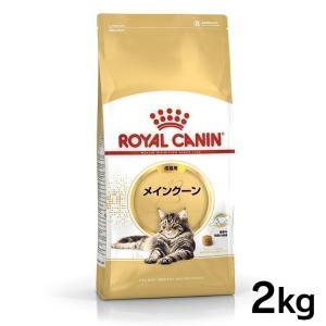 エントリーでP14倍以上!ロイヤルカナン 猫 メインクーン 2kg ( 成猫用 生後12ヵ月齢以上 FBN キャットフード )