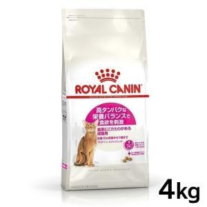 ロイヤルカナン 猫 プロテイン エクシジェント 4kg  (旧 エクシジェント42)  ( 成猫用 FHN キャットフード )