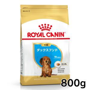 ロイヤルカナン 犬用 ダックスフンド 子犬用 800g 正規品|nyanko