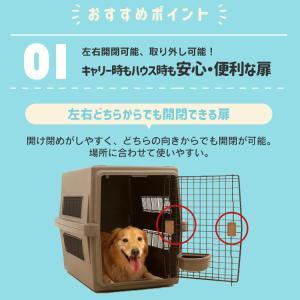 猫 キャリーバッグ ペットキャリー バッグ キャリーケース 猫 犬 おしゃれ キャリー 飛行機 エアトラベルキャリー アイリスオーヤマ ATC-460|nyanko|05