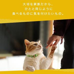 猫 おやつ 無添加 国産 ささみ ピューレ ねこ用ナピューレ 鶏ささみ 24本 P-NNS24 アイリスオーヤマ|nyanko|03
