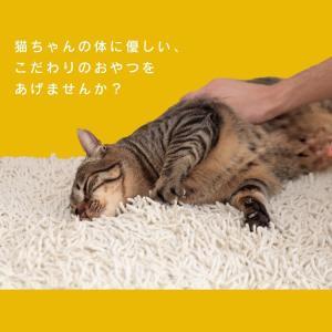 猫 おやつ 無添加 国産 ささみ ピューレ ねこ用ナピューレ 鶏ささみ 24本 P-NNS24 アイリスオーヤマ|nyanko|04