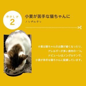 猫 おやつ 無添加 国産 ささみ ピューレ ねこ用ナピューレ 鶏ささみ 24本 P-NNS24 アイリスオーヤマ|nyanko|08