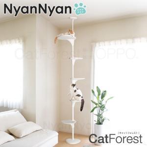 キャットフォレストはステップの高さと向きを上下左右へ自由に調整ができるため、初めての猫でも好みの高さ...