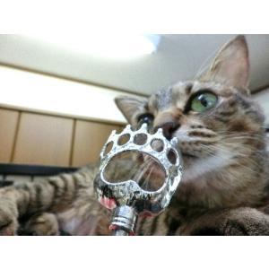 猫 ネコ ねこ キャット まごの手 孫の手 伸縮 さし棒 (にゃんこ掻きの手)(689)|nyanpakusengen