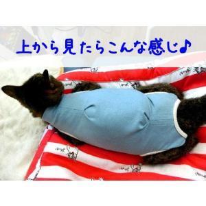 猫用術後服 ナメにゃいで〜レオタード|nyanpakusengen|11