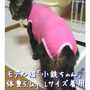 猫用術後服 ナメにゃいで〜レオタード|nyanpakusengen|08