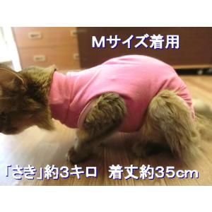 猫用術後服 ナメにゃいで〜レオタード|nyanpakusengen|09