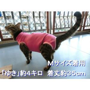 猫用術後服 ナメにゃいで〜レオタード|nyanpakusengen|10