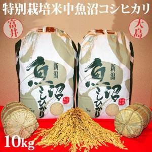 令和元年新米 極上味わい福袋  特別栽培米中魚沼産コシヒカリ10kg