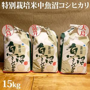 令和元年新米 極上味わい福袋 コシヒカリ&新之助セット15kg