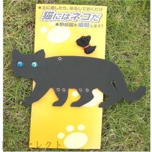 コンパル 猫にはネコだ|o-k-you