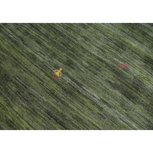 ギャッベ ギャベ/アマレ、細かな上質ランク、リ...の詳細画像3