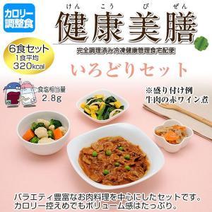 カロリー調整食 健康美膳 いろどりセット(6食セット) C-1|oasismse