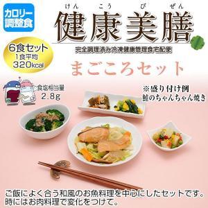カロリー調整食 健康美膳 まごころセット(6食セット) C-2|oasismse