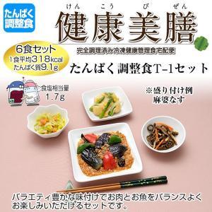 たんぱく調整食 健康美膳 たんぱく調整食T-1セット(6食セット)|oasismse