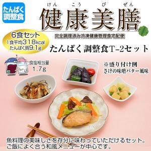たんぱく調整食 健康美膳 たんぱく調整食T-2セット(6食セット)|oasismse