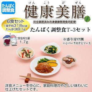 たんぱく調整食 健康美膳 たんぱく調整食T-3セット(6食セット)|oasismse