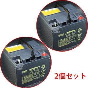 スズキ セニアカー(電動カート)用バッテリー 2個セット HC38-12
