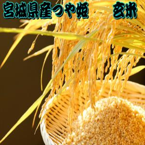米 30kg 玄米 つや姫 一等米 宮城県産 令和2年産 15kg×2袋