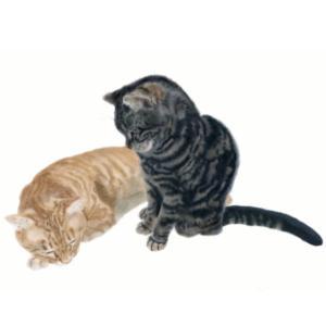 絵画 モダン アートパネル アート インテリア 雑貨 おしゃれ ロココロ 猫 ネコ ねこ 動物 アニマル 画家 : rune 作品 : おやすみ|obeolysco
