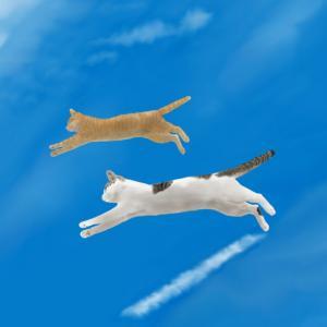 絵画 モダン アートパネル アート インテリア 雑貨 おしゃれ ロココロ 猫 ネコ ねこ 動物 アニマル 画家 : rune 作品 : 空飛ぶ猫|obeolysco